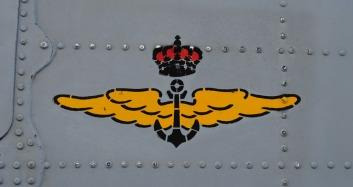 Logo_Flotilla_Aeronaves
