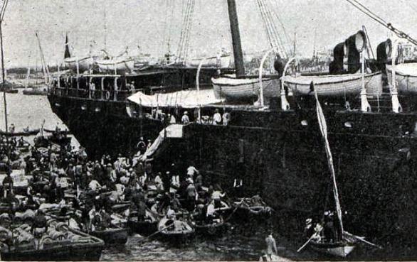 VC Alicante 03