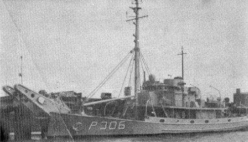 P-306