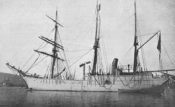 Stella Polare 10