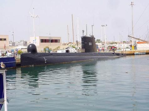 Delfin S-61