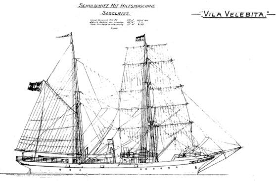 Vila Velebita perfil