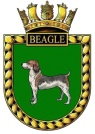 Beagle patch