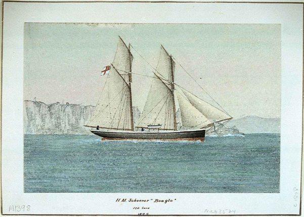 HMS Beagle 1872 - RMG
