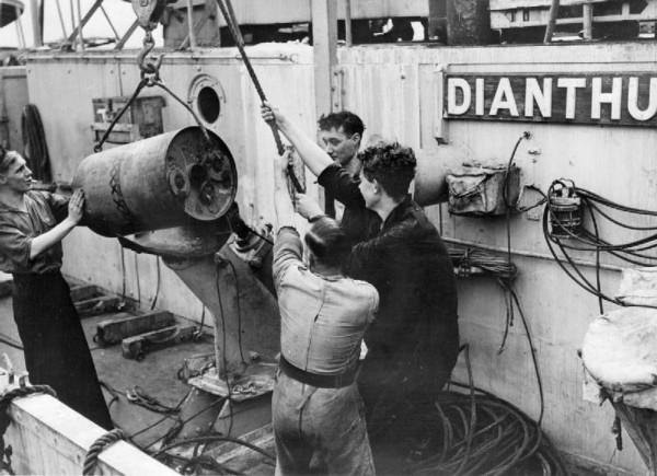 HMS Dianthus - WK